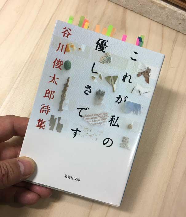 谷川俊太郎詩集・これが私の優しさです 集英社文庫